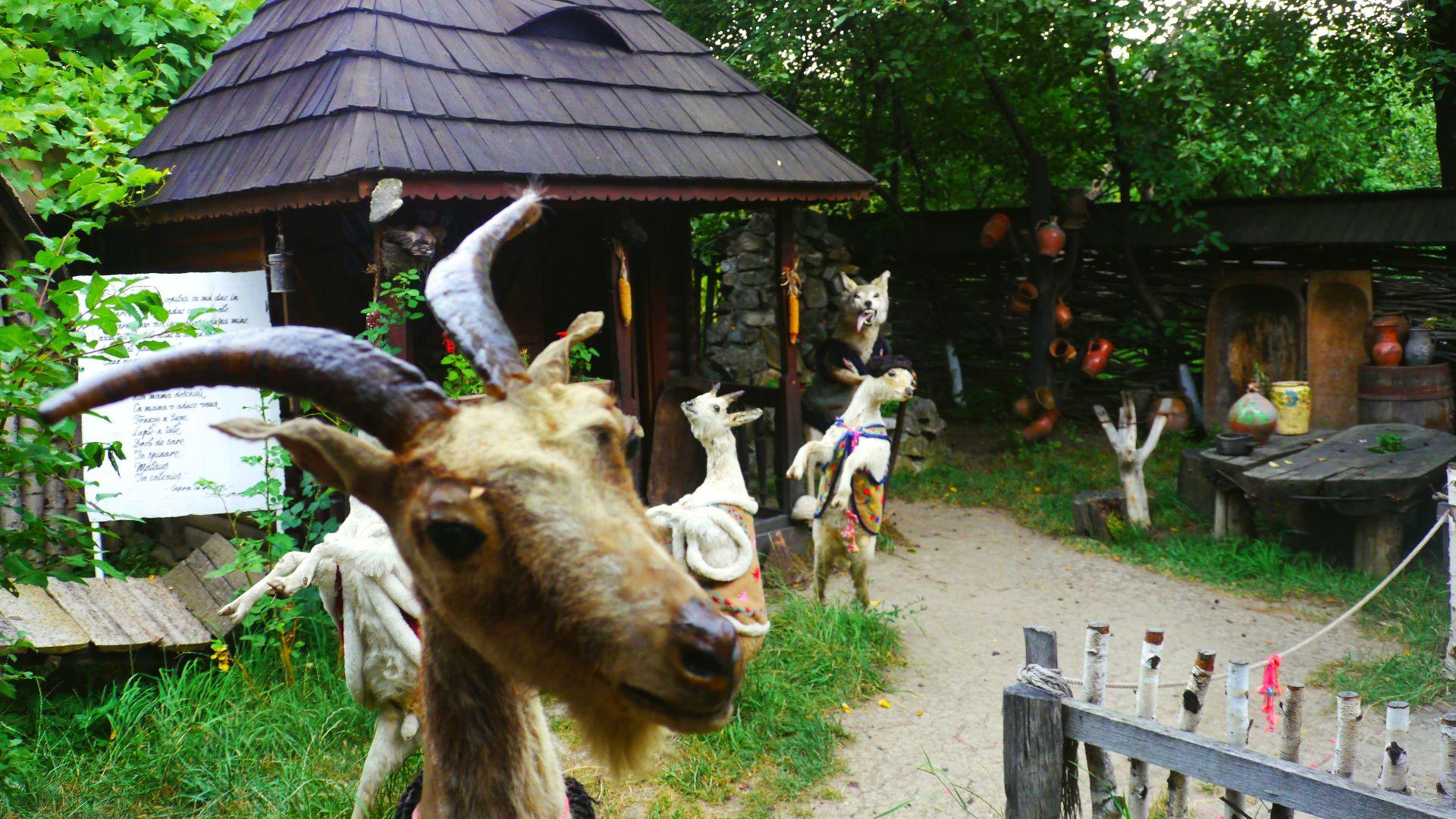 călătorie in Neamț vacanță în neamț casa memoriala ion creangă amintiri din copilarie casa humulesti, povești ion creanga personaje povești ion creanga