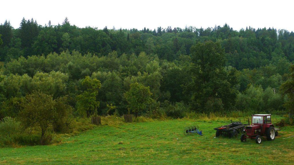 Aventuri pe tărâmul Neamțului. Atracții turistice în județul Neamț cetatea neamțului pădurea de argint schitul vovidenia hotel roman