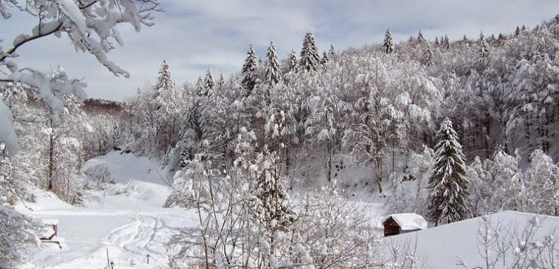 Vacanța de Crăciun la sat a umplut 70% din pensiunile din Maramureș