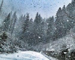 călătoria în austria Dacă tranzitați sau planificați o vacanță în Bulgaria zilele acestea, trebuie să aveți grijă pentru că 15 regiuni vor fi afectate de căderi însemnate de precipitaţii sub formă de ninsoare