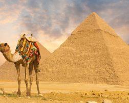 Autoritățile din Egipt tocmai au anunțat că, începând din 15 august, pentru cetăţenii străini care se deplasează în acolo este necesar un test negativ christian tour reaia cursele către egipt