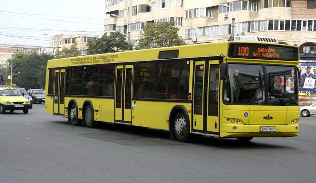 Un autobuz numit Dorință… de a omorî în bătaie