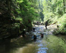 Aventura prin albiile stâncoase ale râurilor și pârâurilor gorjene