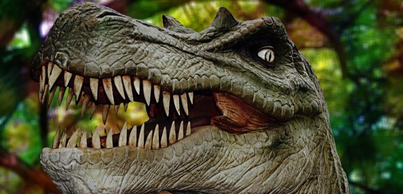Vizitați fosile ale unor dinozauri care au trăit în România acum 7 milioane de ani