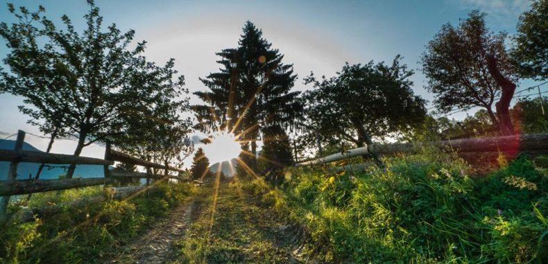 Via Transilvanica, cel mai frumos traseu din România, s-a inaugurat