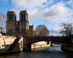 catedrala notre dame paris cocoșatul de la notre dame (20)