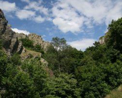 https://www.i-tour.ro/turism-ecvestru-in-parcul-national-muntii-macinului/