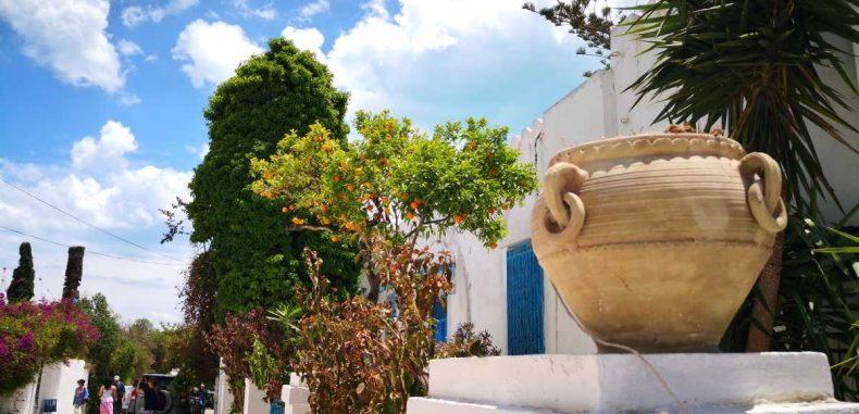 Sidi Bou Said, orașul artiștilor, crâmpei de Grecia în inima Tunisiei